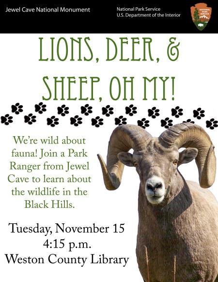 jewel-cave-11-15-16